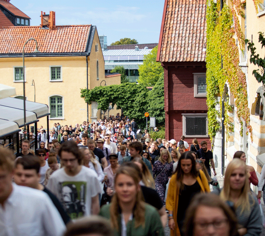 Image of students standing outside Campus Gotland