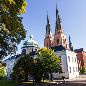Uppsala cathedral and the University Museum